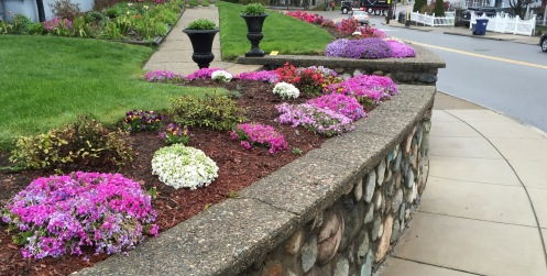 BorderGardenStoneWall