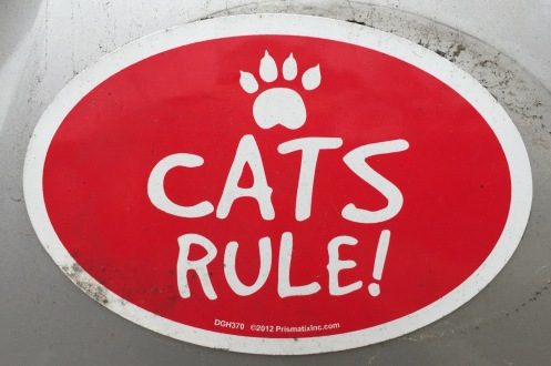 CatsRule